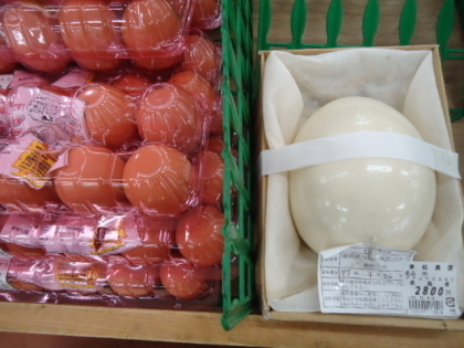 ダチョウの卵2.jpg