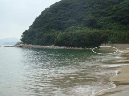 深江地磯2.jpg