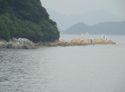 深江地磯8.jpg