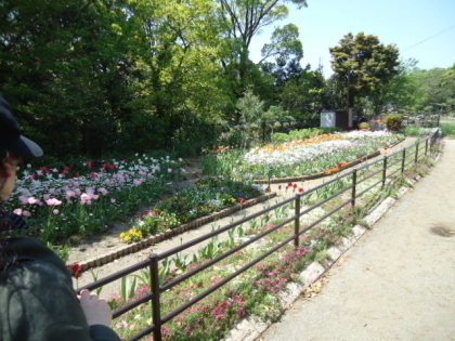 西南杜の湖畔公園2.jpg
