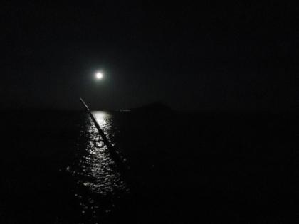 野辺崎の夜.jpg